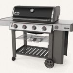 Weber 62011001 Genesis II E-410 Review